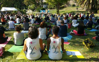 11 mai 2019 – Festival de Yoga Adapté à Lille